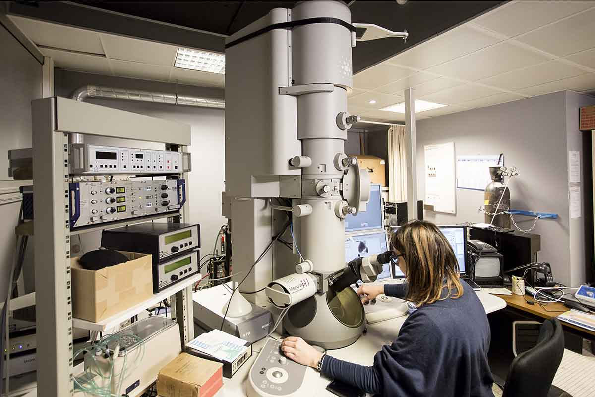 Plateforme Microscopie électronique