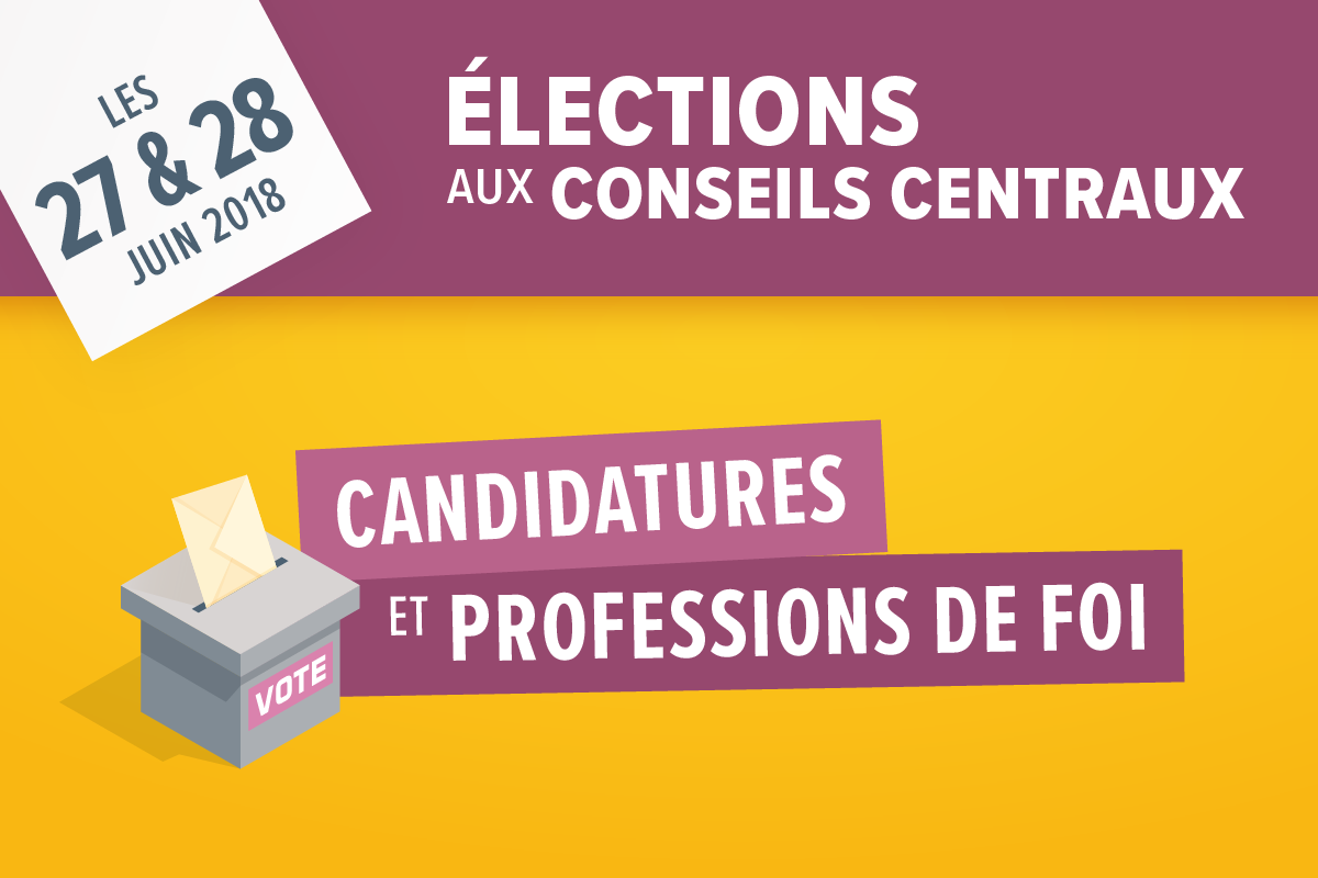 Elections candidatures professions de foi