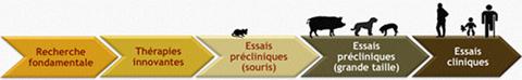 Consortium de recherche translationnelle