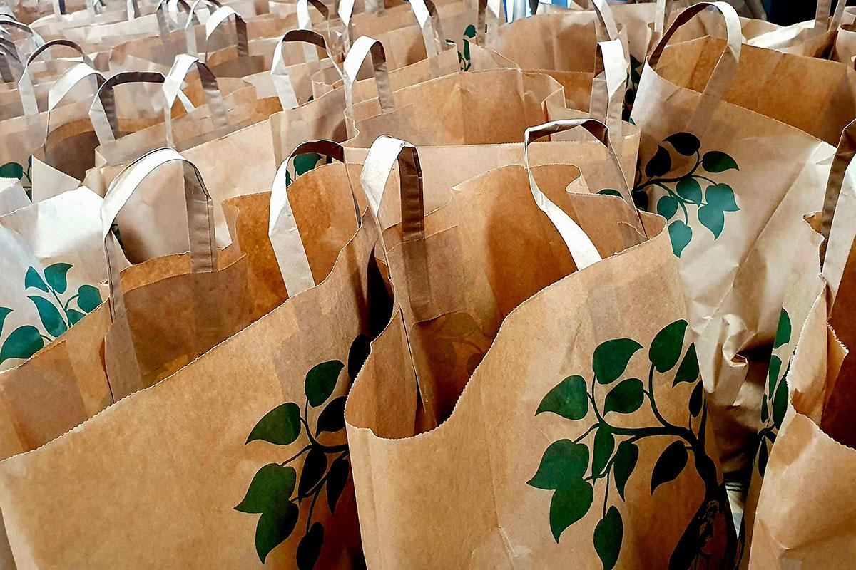 Distribution de paniers solidaires à l'UPEC