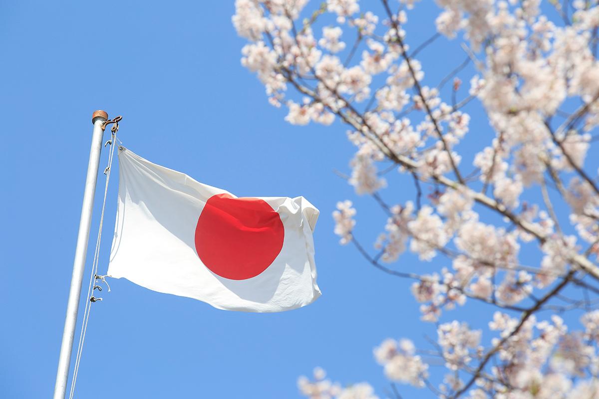 Drapeau et cerisier du Japon