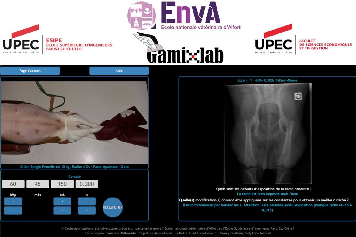 console de simulation radiographiqe vétérinaire